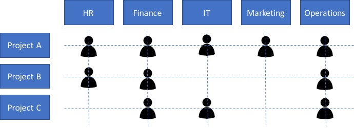 Matrix Management diagram