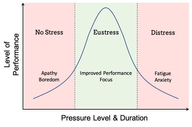 Eustress and Distress - Work Pressure
